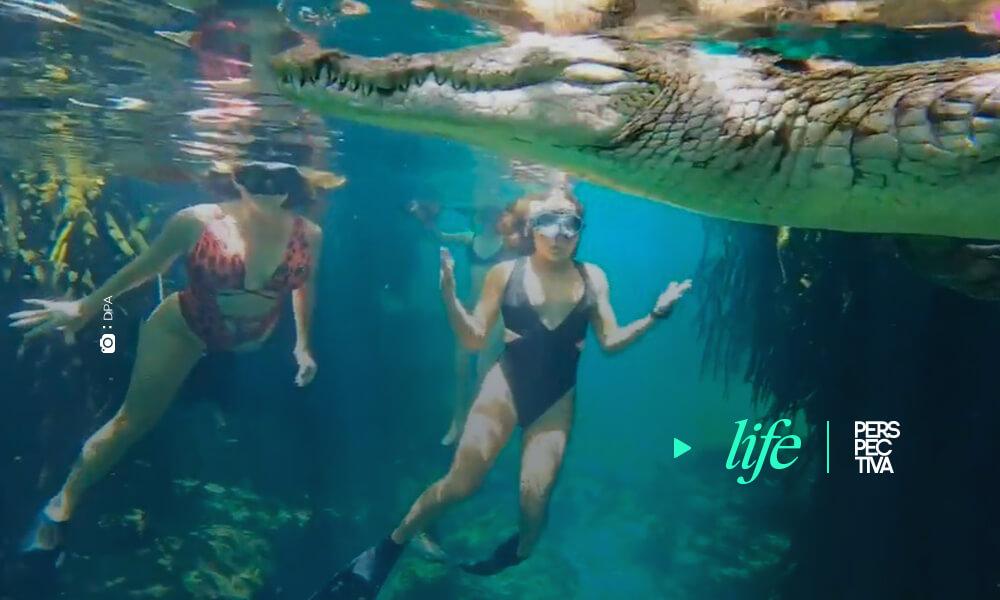 El fotógrafo submarino Ken Kiefer y su mujer Kimber se sumergen en un cenote mexicano para nadar entre cocodrilos